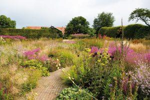 Trvalky v moderních zahradách