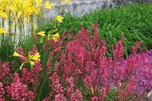 Naplánujte si klasické květinové rabato. FOTO LUCIE PEUKERTOVÁ