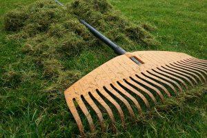 Do kompostéru bez obav přidávejte posečenou trávu nebo hmotu z vertikutace. Foto: Lucie Peukertová