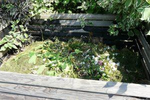 Do zahradního kompostu lze přidávat různé kuchyňské a zahradní zbytky. Foto: Lucie Peukertová