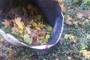 Listí ze zahrady do kompostéru jistě patří, ale je třeba ho prosypávat zeminou a dalšími materiály, aby se podpořil jeho rozklad. Foto: Lucie Peukertová