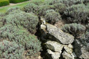Na stěny spirály využijte lokální kámen. foto: Lucie Peukertová