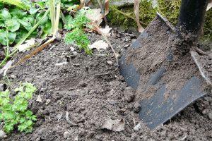 Půda hnojená kompostem bude mít přirozenou drobtovitou strukturu. foto: Lucie Peukertová