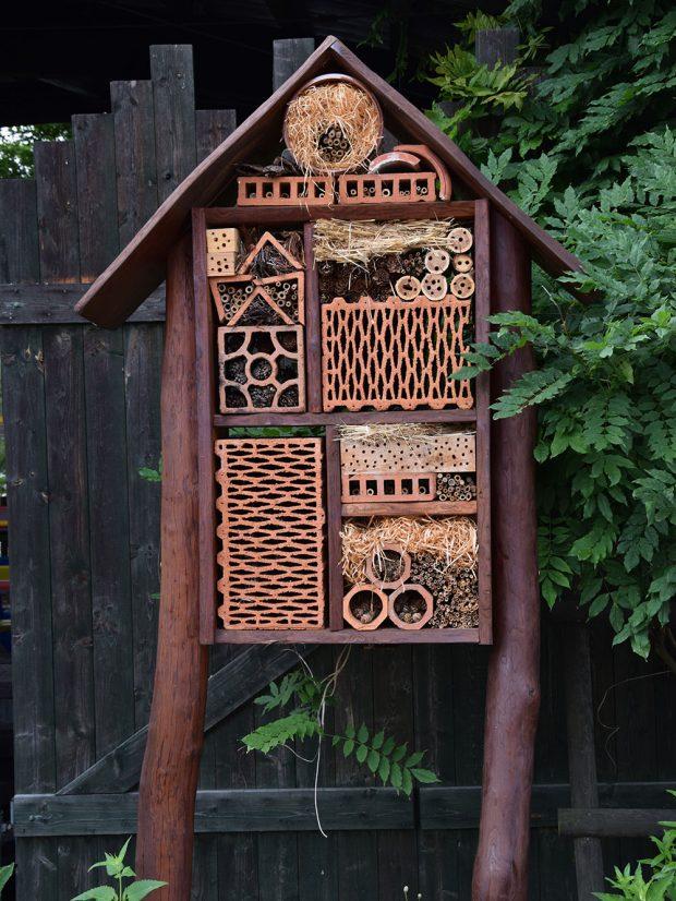 S dětmi můžete vyrobit hmyzí hotel. Pak je bude bavit kontrolovat jeho osídlení hmyzem. foto: Lucie Peukertová