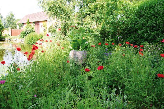 Druhová diverzita je předpokladem fungování každé přírodní zahrady. FOTO LUCIE PEUKERTOVÁ