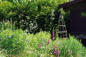 I přírodní zahrada by měla vycházet z promyšleného konceptu. FOTO LUCIE PEUKERTOVÁ