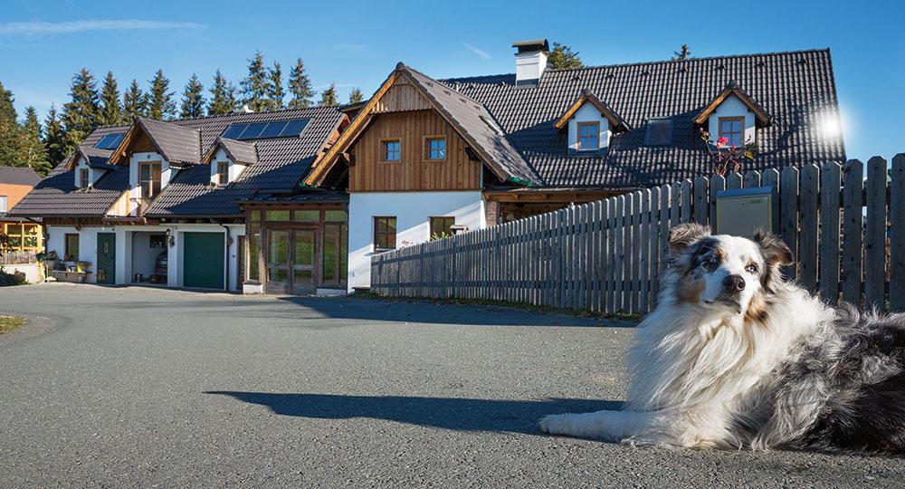 Jak vybrat novou střechu právě pro váš dům