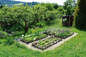 Zeleninové záhony mohou mít také něco do sebe. FOTO LUCIE PEUKERTOVÁ