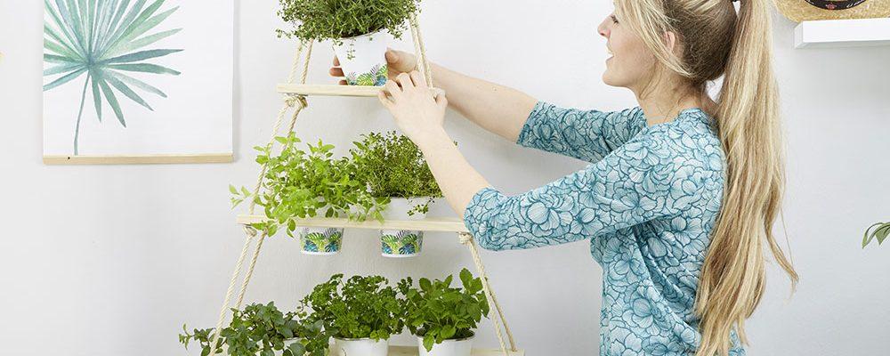 Jak si vyrobit domácí bylinkovou zahrádku