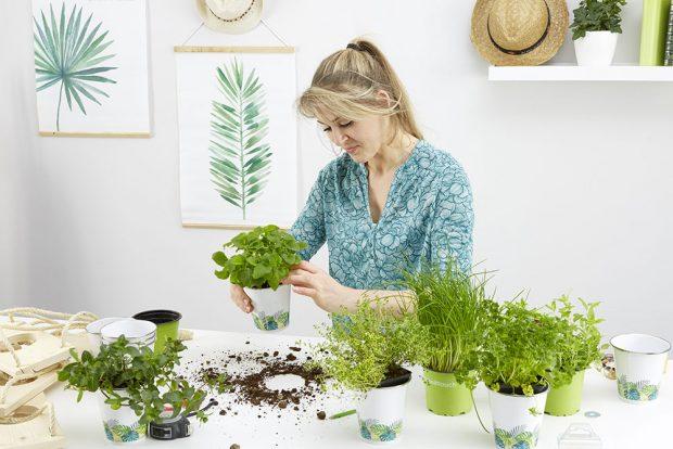Vkládání bylinek Nezbylo mi než jen vložit bylinky do květináčů. Nyní se mohu věnovat grilování. foto MÖBELIX