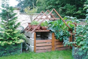 Pravidla kompostování a průvodce výběrem kompostéru