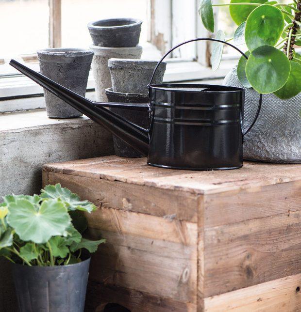Konvička na zalévání Black (IB Laursen), dlouhá úzká hubice pro přesné zalévání až ke kořenům rostliny, kov, 22 x 42 cm, 1,4 l, cena 434 Kč, www.bevedo.cz