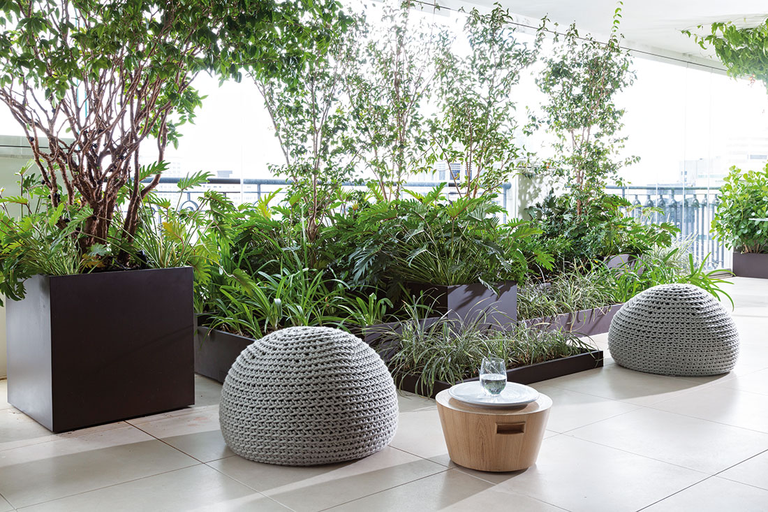 Rostliny jsou zasazeny vohromných květináčích, které nejen že velmi dobře vypadají, ale zároveň usnadňují péči. FOTO RUI TEIXEIRA