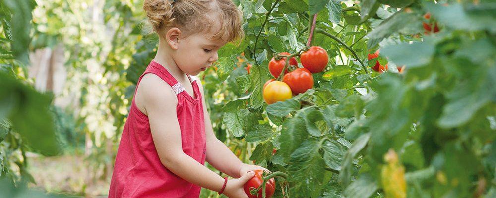 Zahrada jako stvořená pro děti