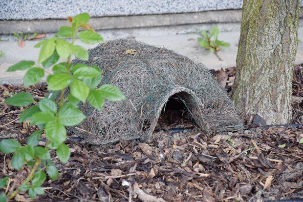 Dejte do zahrady společně sdětmi skrýše pro užitečné živočichy. FOTO LUCIE PEUKERTOVÁ