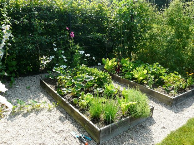 Užitková zahrada nemusí pokrývat celý pozemek, pro menší rodinu postačí jen několik malých záhonů.