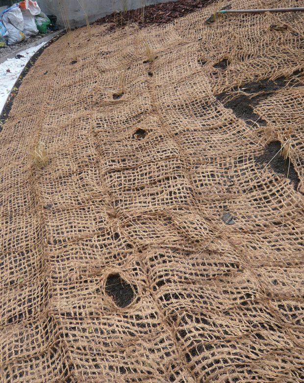 Kokosová rohož poměrně efektivně zadržuje mulčovací materiály. foto: Lucie Peukertová