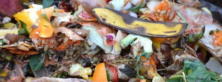 Třídění odpadu jako standard dnešní doby