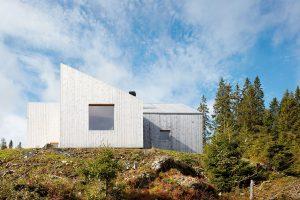 Neošetřená borovicová fasáda bude postupně měnit barvu až do stříbrného odstínu, který vzimě splyne se závějemi sněhu. FOTO BRUCE DAMONTE