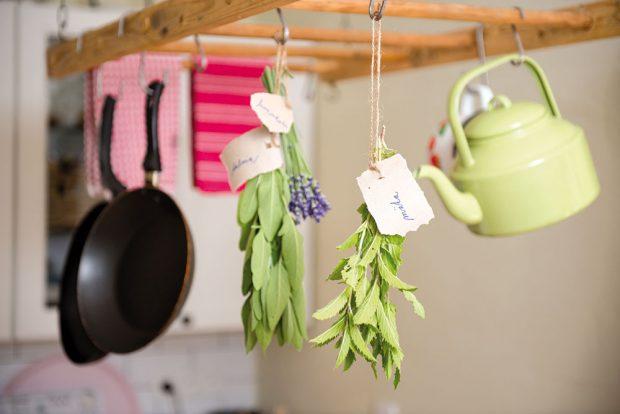 Levandule, živé květiny asušené bylinky v kuchyni