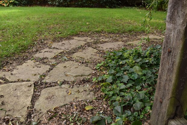 Úklidu spadaného listí se věnujte především na cestách, kde by hrozilo uklouznutí. foto: Lucie Peukertová