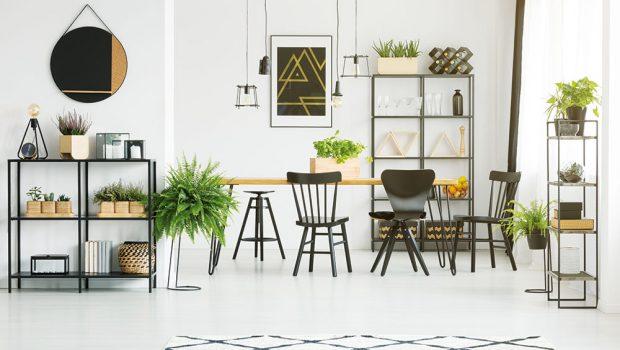 Živý i rozkvetlý interiér: Neobvyklé pěstování rostlin v interiéru