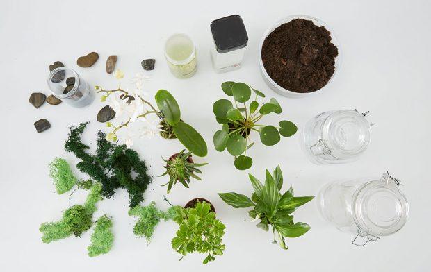 Budeme potřebovat nádoby, rostlinky (skalničky, kaktusy, orchideje…), kamínky, dekorativní štěrk nebo písek, mech, zeminu. Foto MÖBELIX
