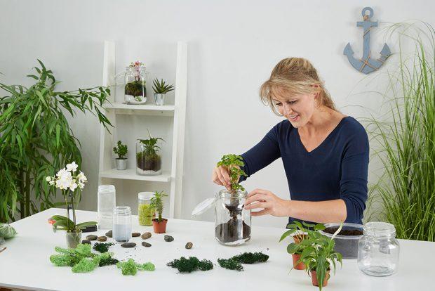 Při výběru rostlin popustíme uzdu fantazii. Naší tvořivosti klade limity především velikost nádoby. Foto MÖBELIX