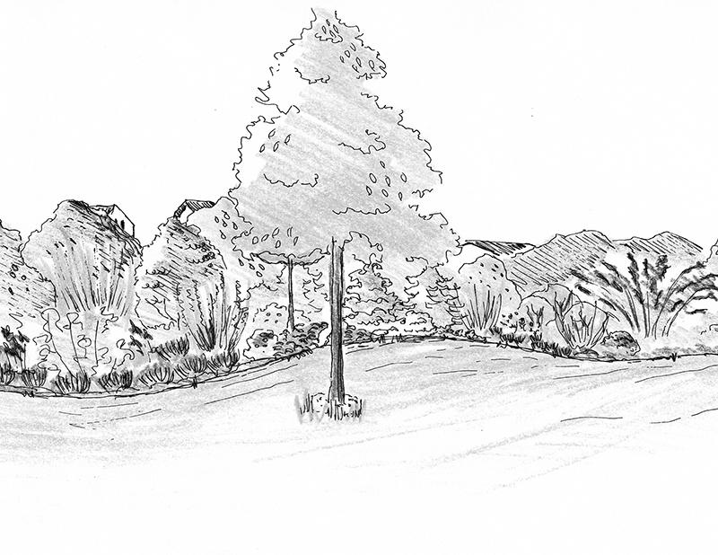 Při plánování zahrady si zkuste na papír vytvořit nákres vašich nápadů.