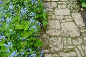 Skvělým materiálem pro tvorbu zahradních cestiček je tradiční kámen. foto: Lucie Peukertová