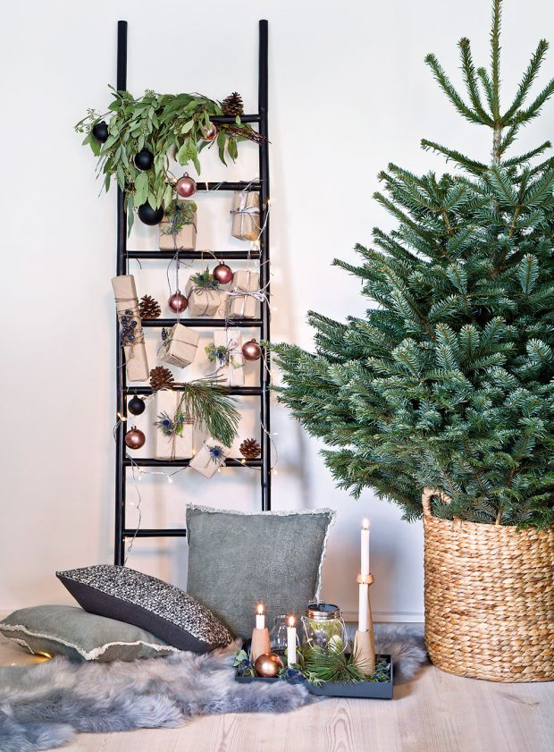 NENAZDOBENÝ STROMEČEK, pokud je pěkně urostlý, hustý a rovnoměrný, stačí někdy jen vložit do ratanového koše a ozdoby použít jinde, například na žebříku. Originální a přitom mimořádně působivá vánoční výzdoba je na světě. FOTO WESTWING
