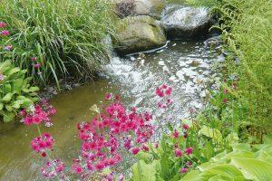 Efektivním hospodařením můžeme vodu šetřit azachovat ijejí dosavadní kvalitu. FOTO LUCIE PEUKERTOVÁ