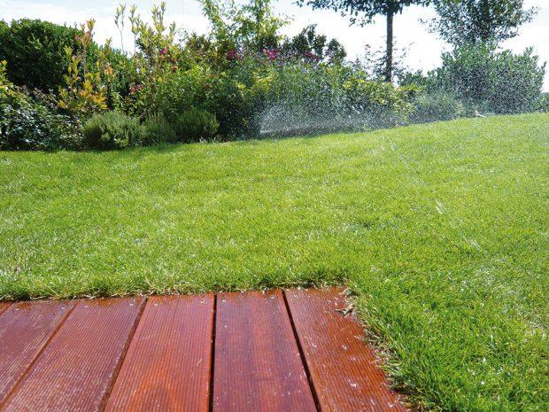 Nejvetším spotřebitelem vody je nízko sečený intenzivně udržovaný trávník. FOTO LUCIE PEUKERTOVÁ