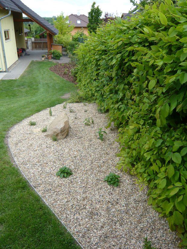 Habr obecný je dobře dostupný po finační stránce a navíc zahradě vtiskne příjemnou proměnlivost v průběhu roku. foto Lucie Peukertová