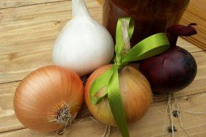 Jednotlivé odrůdy cibule se liší délkou skladovatelnosti a také možnostmi použití v kuchyni. foto Lucie Peukertová