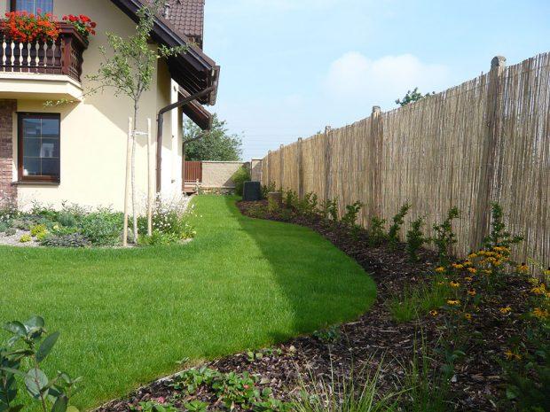 Nově založený živý plot z hlohyně šarlatové. Za pár let tyto dřeviny dosáhnou značných rozměrů, jejich přírůst během let za rok dosáhne i jeden metr. foto Lucie Peukertová