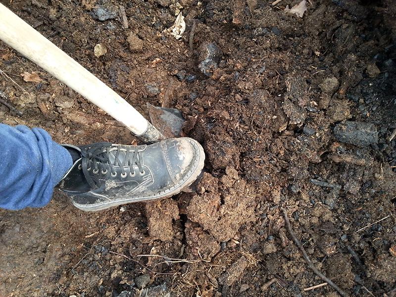 Hloubkové rytí není vždy nutné, zvláště na lehké půdě si vystačíme s mělkým nakypřením.