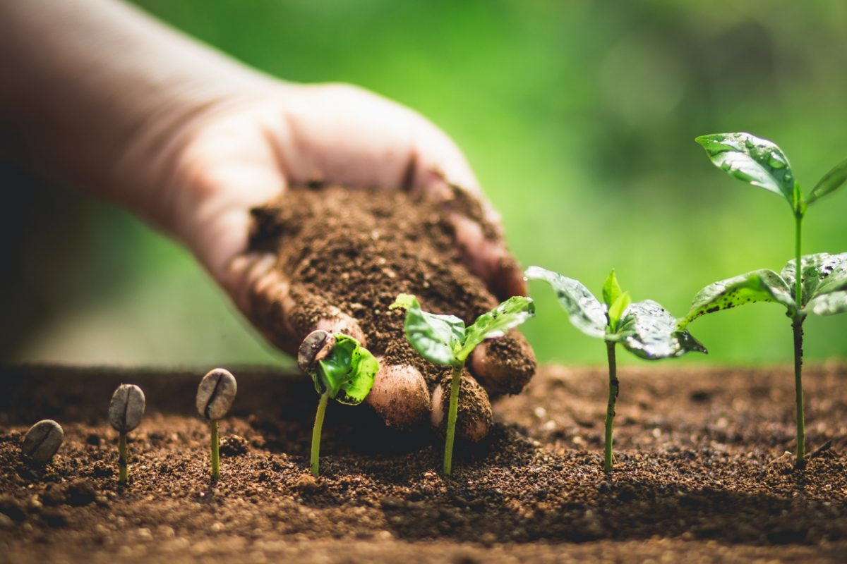 Příprava půdy na novou sezonu