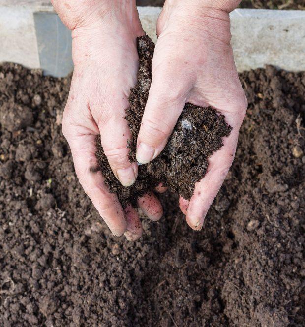 Díky zemině zkompostu získáme potřebné doplnění hmoty vzáhonech. FOTO ISTOCK