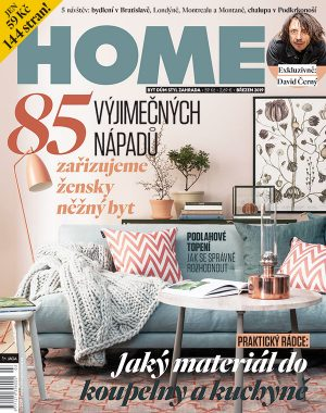 HOME 3/2019
