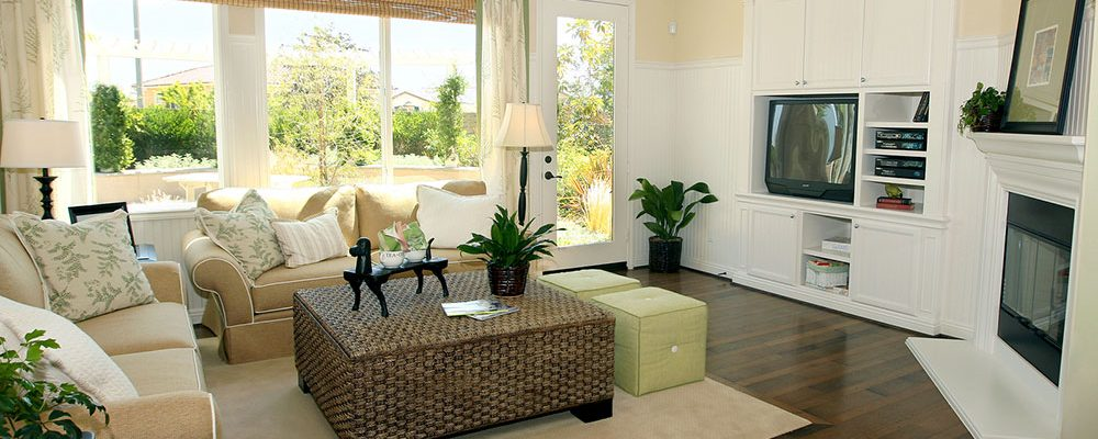 Jak jednoduše oživit interiér? Pokojovkami!