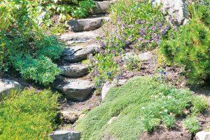 Správně sestavené adobře usazené alpinium proměnlivě zdobí zahradu po celý rok. FOTO ISTOCK