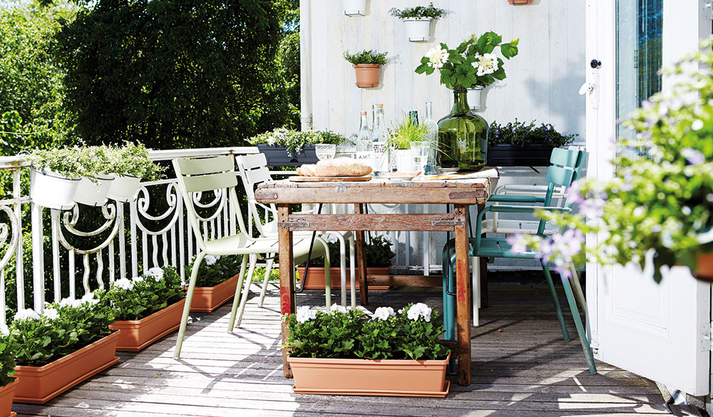 Městské zahradničení bez zahrady