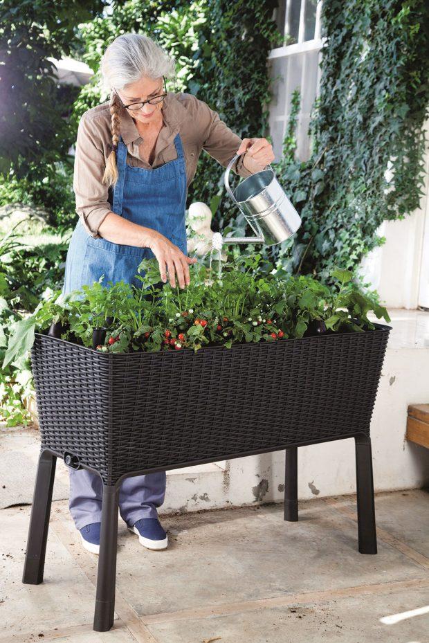 Vysoký záhon Easy growing ušetří zbytečné ohýbání se ašetří také kolena. Má obvodové zavlažování pro bezstarostnou péči aje určený pro mnoho různých druhů zeleniny, bylinek adalších rostlin. www.hornbach.cz Foto Hornbach