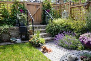 Chodníky, cesty a terasy v zahradě