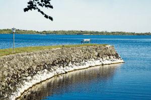 jezero Lough Ree