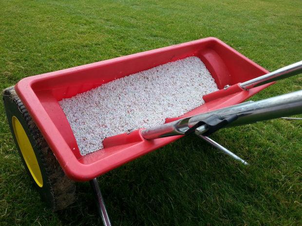 rozpustné hnojivo na trávnik
