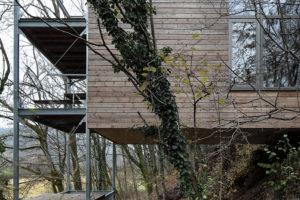 dom na stromě