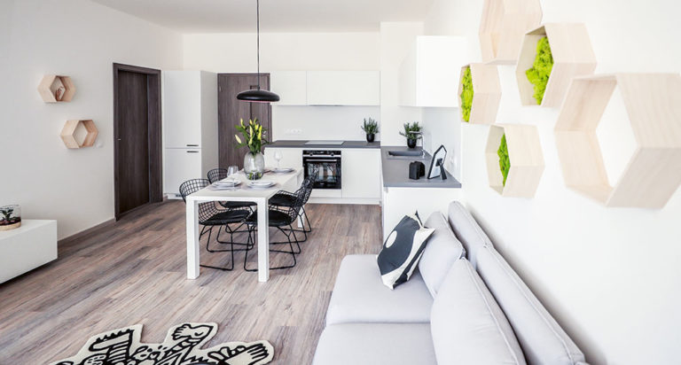 Seversky jednoduchý a světlý byt v Praze