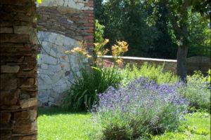 zahrada pred domem